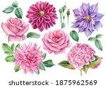 Set Of Flowers Dahlia  Rose ...