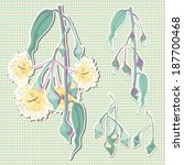 eucalyptus flower yellow vector | Shutterstock .eps vector #187700468