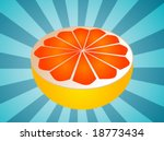 sliced half pink grapefruit... | Shutterstock .eps vector #18773434
