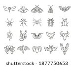 Outline Icon Set Of Mystic...