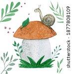Cartoon Snail Watercolor...