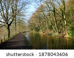 The Tree Lined Rochdale Canal...