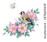 hand drawn goldfinch sitting on ... | Shutterstock .eps vector #1878605659