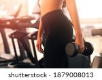 workout in gym by a beautiful...   Shutterstock . vector #1879008013