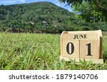 June 1  Country Background For...