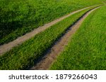 Dry Dirt Road And Green Grass...