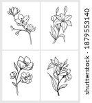 flower outline. set floral... | Shutterstock .eps vector #1879553140