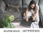 Small photo of Asian woman wearing glasses sitting on a sofa and typing on her laptop computer while working from home in the living room of a house in Edinburgh, Scotland, United Kingdom, with a grey cat beside her