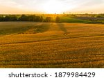 golden fields of wheat aerial... | Shutterstock . vector #1879984429