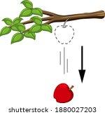 falling apple for gravity... | Shutterstock .eps vector #1880027203