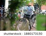 Amsterdam  Neteherlands. August ...