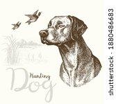 vector illustrations of hunting ... | Shutterstock .eps vector #1880486683