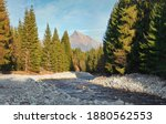 forest river bela with small... | Shutterstock . vector #1880562553