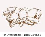 vector vintage illustration of... | Shutterstock .eps vector #1881034663