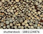 Firewood. Firewood In Logs....