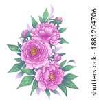 hand drawn pink peony flowers ... | Shutterstock .eps vector #1881204706