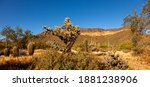A Panoramic Desert Landscape At ...