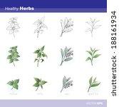 healthy herbs   Shutterstock .eps vector #188161934
