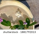 Copper Or Brass Bowl With Water ...