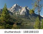 Trees And A Mountain Vista...