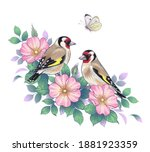 hand drawn goldfinches sitting... | Shutterstock .eps vector #1881923359