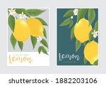 lemon fruit with flower... | Shutterstock .eps vector #1882203106