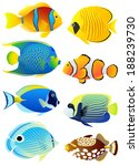 Collection of colorful tropical fish. - stock vector