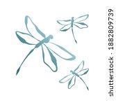 Dragonfly Mascot Logo Design...