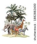 tropical vintage botanical...   Shutterstock .eps vector #1882882600