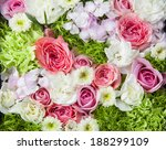 flowers    Shutterstock . vector #188299109