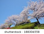 cherry tree | Shutterstock . vector #188306558