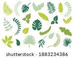different green leaves. vector... | Shutterstock .eps vector #1883234386