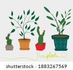 home plants in colored pots... | Shutterstock .eps vector #1883267569