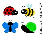 Bee Bumblebee  Butterfly  Snail ...