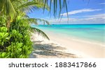 Beautiful Virgin Tropical Beach ...