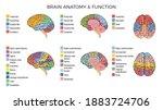 human brain anatomy function...   Shutterstock .eps vector #1883724706