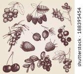 vector set of hand drawn... | Shutterstock .eps vector #188395454