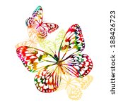 Colorful Butterflies . Vector