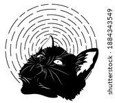 portrait of cute black kitten... | Shutterstock . vector #1884343549