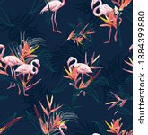 hawaii tropical flamingo with... | Shutterstock .eps vector #1884399880