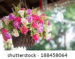 Multicolored Flowers In Hangin...
