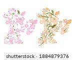 branch of cherry blossom on... | Shutterstock .eps vector #1884879376