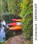 Rayong  Thailand  2020  Kayaks...