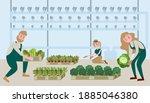 Gardeners Are Picking...