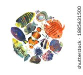 colorful exotic tropical fishes ... | Shutterstock . vector #1885631500