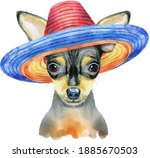 Cute Dog In Mexican Hat. Dog T...