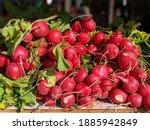 Radish Delicious Fresh Red...