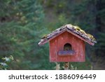 Red Bird House With Moss