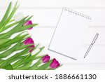 open blank notebook  pen with... | Shutterstock . vector #1886661130