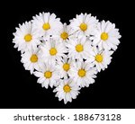 Chamomile Flowers In Heart...
